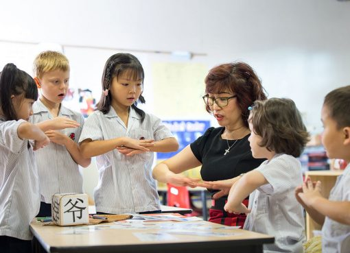 Learning The Chinese Language